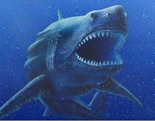 giant shark megalodon